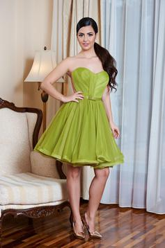 Ana Radu Perfect Style Green Dress